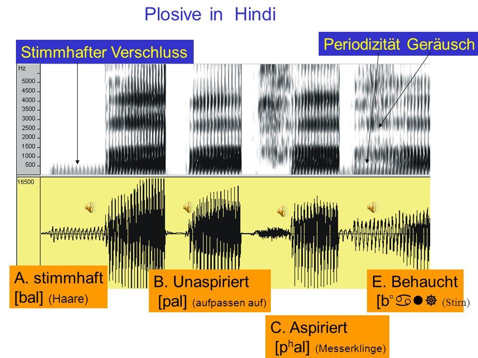 Plosive in Hindi E. Behaucht [búal] (Stirn) Periodizität Geräusch